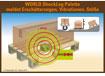 WORLD ShockLog Palette meldet Erschütterungen, Vibrationen, Stöße